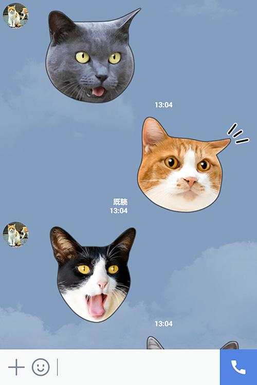 猫のLINEスタンプ「かわいい猫顔&肉球♪」の使用イメージ1