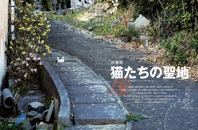 雑誌「SINRA(シンラ)」3月号、石巻・田代島を特集