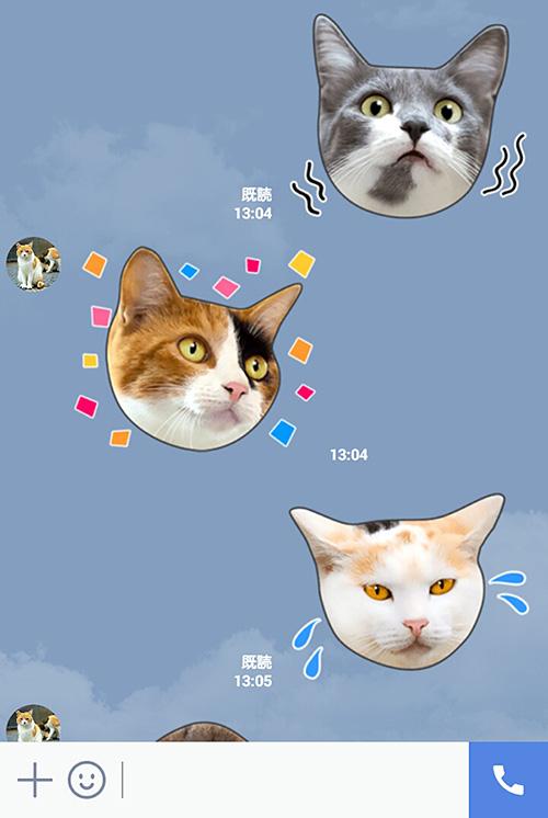 猫のLINEスタンプ「かわいい猫顔&肉球♪」の使用イメージ2