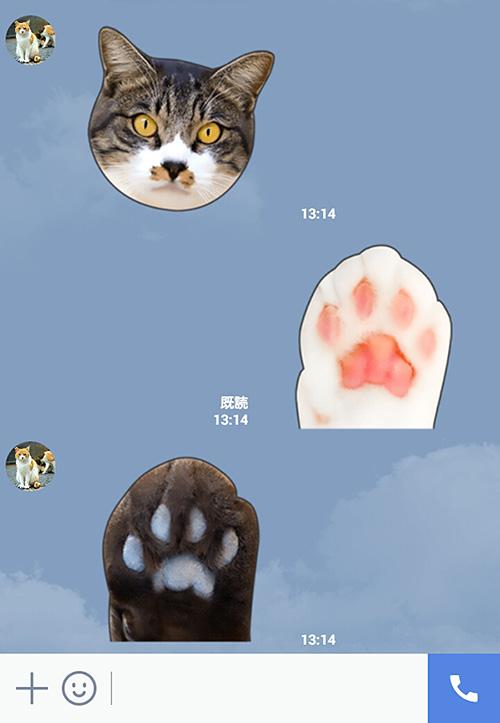 猫のLINEスタンプ「かわいい猫顔&肉球♪」の使用イメージ3