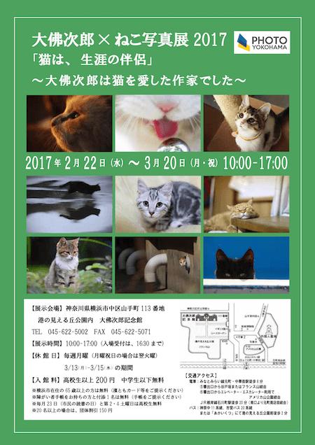 大佛次郎×ねこ写真展2017「猫は、生涯の伴侶」~大佛次郎は猫を愛した作家でした~