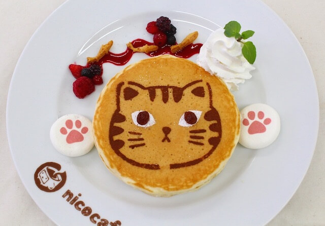 ニコカフェの限定猫メニュー、ぷにぷに肉球連打パンケーキ