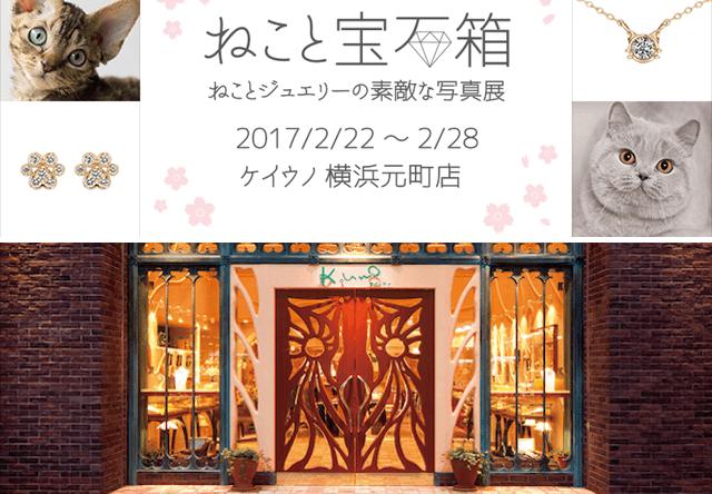 猫×ジュエリーのコラボ写真展「ねこと宝石箱」が2/22から開催