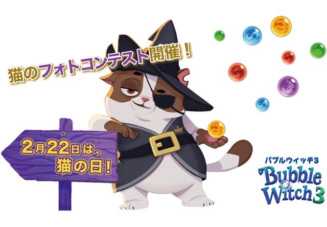 バブルウィッチ3が猫写真コンテスト!ボス猫ウィルバーのプロモ企画