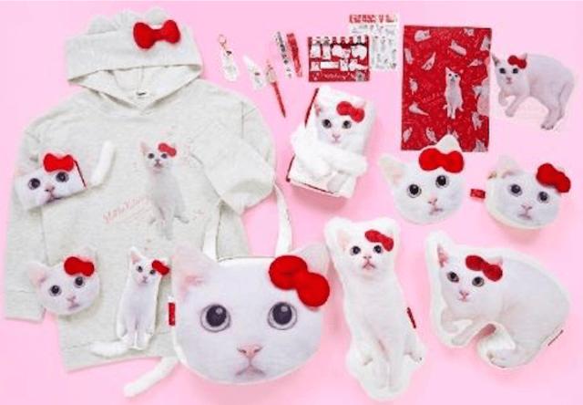 ハローキティと人気猫「あなご」のコラボグッズ全18種が登場!