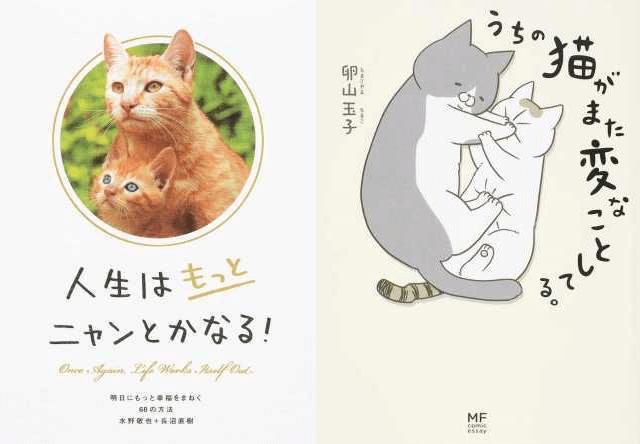 丸善、ジュンク堂書店、文教堂、honto.jpが発表した2016年の猫本ランキング