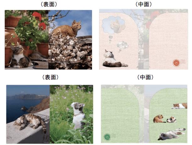 岩合光昭×郵便局のコラボ猫グッズ第2弾、クリアファイル