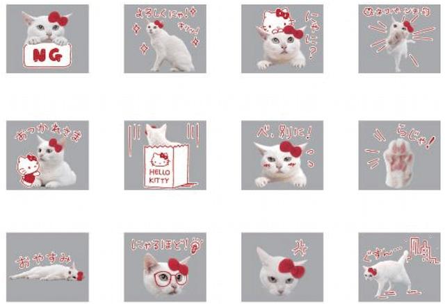 「ハローキティ×白猫あなご」のLINEスタンプ