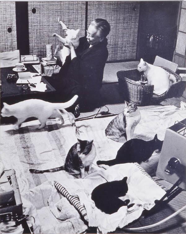 たくさんの猫が暮らしていた大佛次郎の家