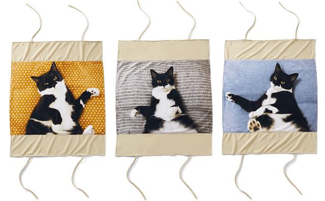 人気猫「ギズモさん」の枕カバーは3種類のラインナップ