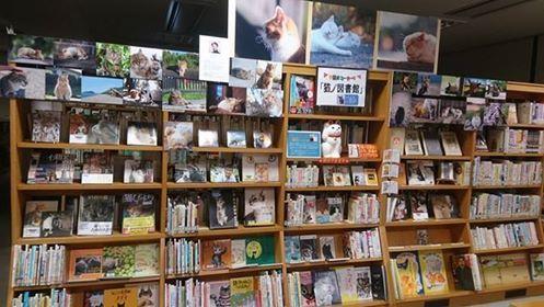 猫ノ図書館のイメージ写真