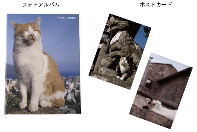 岩合光昭×郵便局のコラボ猫グッズ第2弾、ポストカード付きフォトアルバム