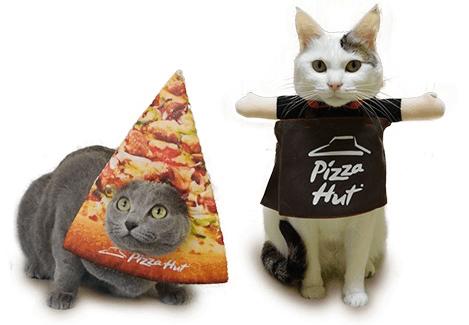 ピザハットオリジナルの猫用グッズセット