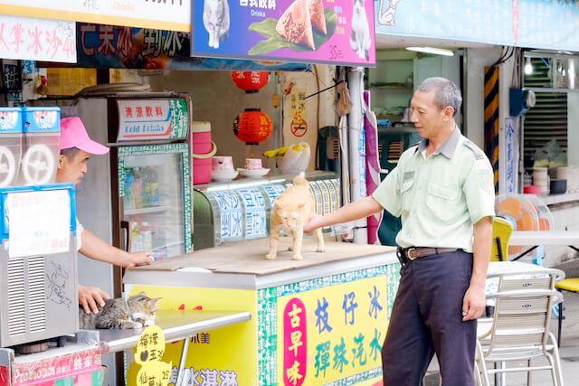 台湾の猫村、侯硐(ホウトン)の屋台と猫