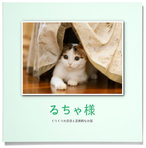 「PhotoJewel S(フォトジュエル・エス)」で作成した猫のフォトブック