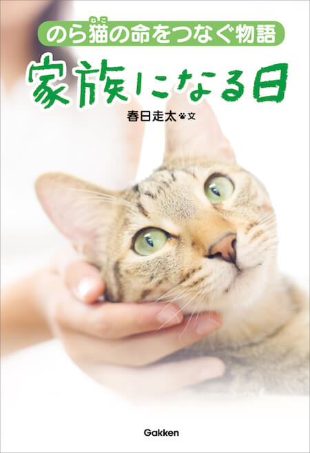 著者:春日走太「のら猫の命をつなぐ物語 家族になる日」