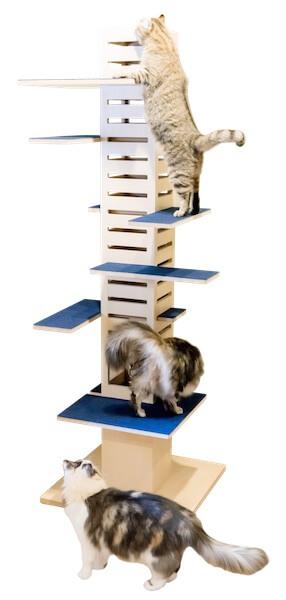 キャットタワー「necobacoT」のインディゴカラー(藍色)で猫が遊んでいる様子