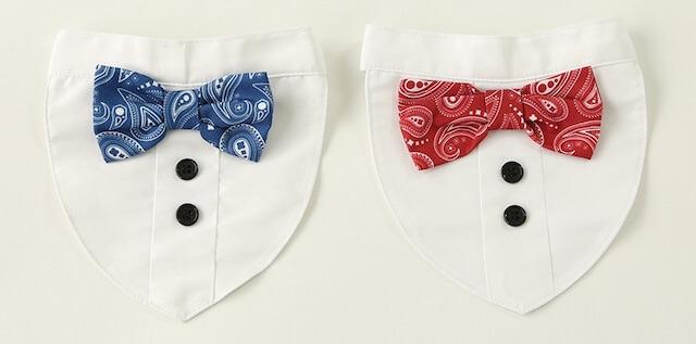 3COINS(スリーコインズ)」の猫でも装着できる蝶ネクタイ付きシャツ