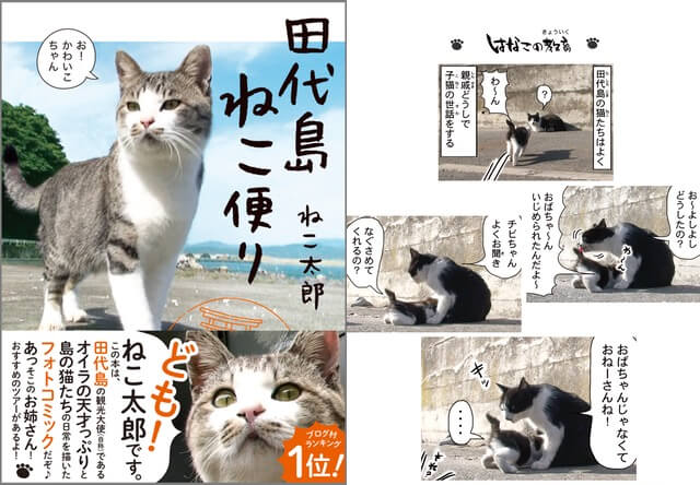 ねこ太郎さんが描いた猫島のフォトコミック「田代島ねこ便り」