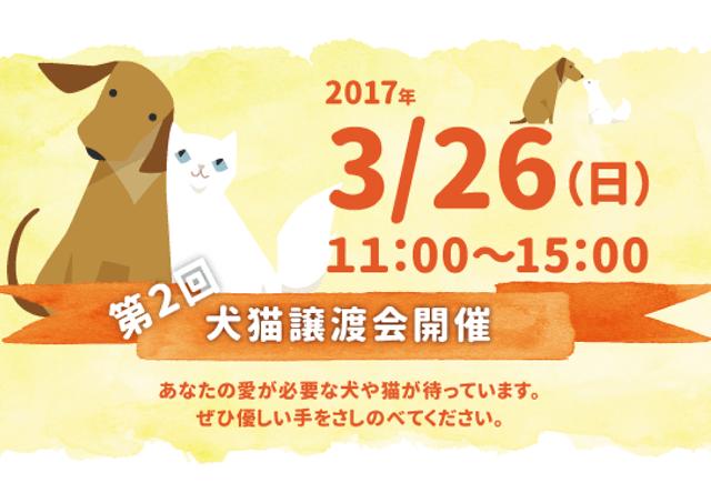 関西ペット協会、3/26に大阪・吹田市で犬猫の譲渡会が開催、譲渡希望者も募集中