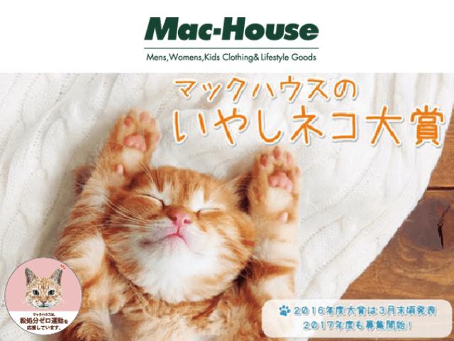 賞金10万円の猫フォトコンテスト第二回「いやしネコ大賞」が開催中
