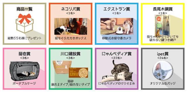 猫のヒヤリ・ハットフォトコンテストの賞品イメージ