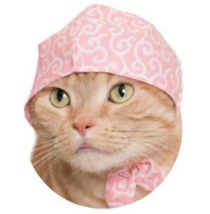 猫のかぶりもの、さくら色×唐草模