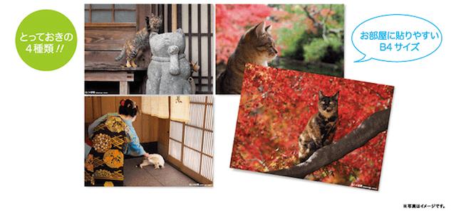 岩合光昭・ねこの京都 B4 ポスター