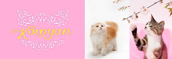 猫好きな人を対象にしたブランド「KOINYAN(コイニャン)」