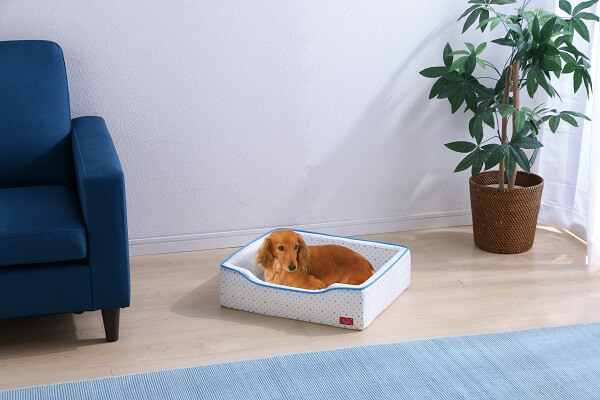 アイリスプラザの夏用猫ベッド、クールウレタンベッド(角型)の使用イメージ