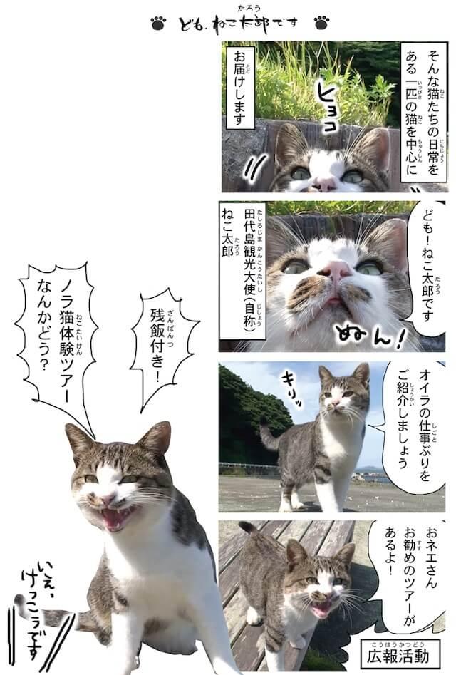 フォトコミック「田代島ねこ便り」猫マンガ誌面イメージ2