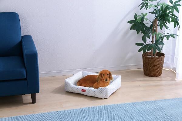 アイリスプラザの夏用猫ベッド、クールソファベッドの使用イメージ