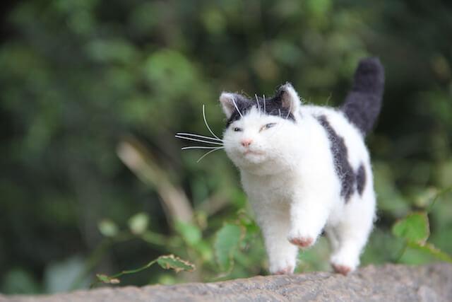中山みどりさんの羊毛フェルト作品、さっそうと歩く猫