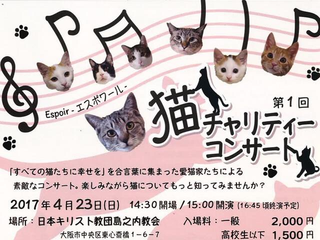 保護猫のチャリティーコンサートが大阪・島之内教会で開催