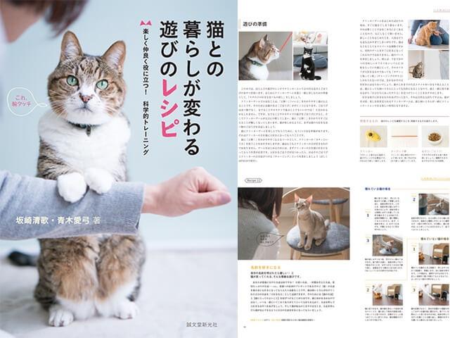 遊んで猫をしつけるトレーニング「猫との暮らしが変わる遊びのレシピ」