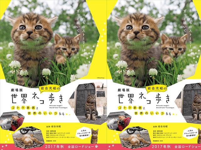 人気ネコ番組「岩合光昭の世界ネコ歩き」がにゃんと映画化!