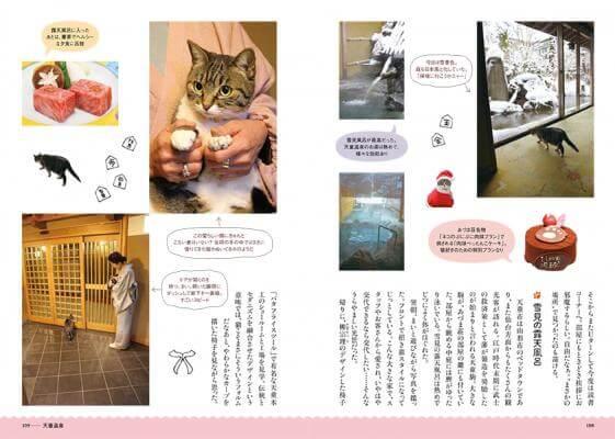 書籍「ネコ温泉」に掲載されている猫がもてなす温泉宿