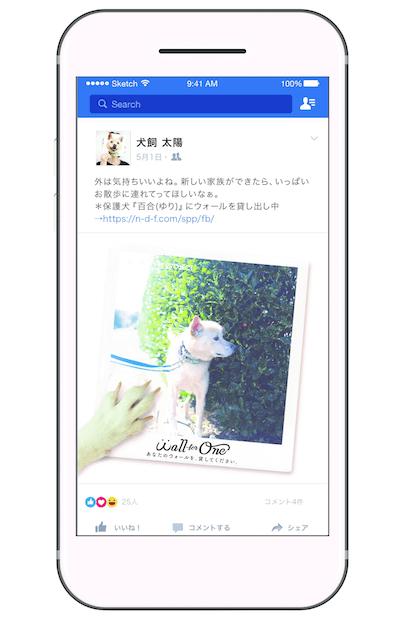 保護猫・犬がタイムラインに投稿するイメージ