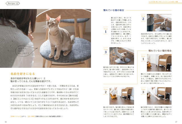 書籍「猫との暮らしが変わる遊びのレシピ」の書籍内容イメージ