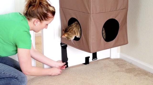 ベルトを締めて猫ハウス「Hangin Cat Condo」をドアに固定