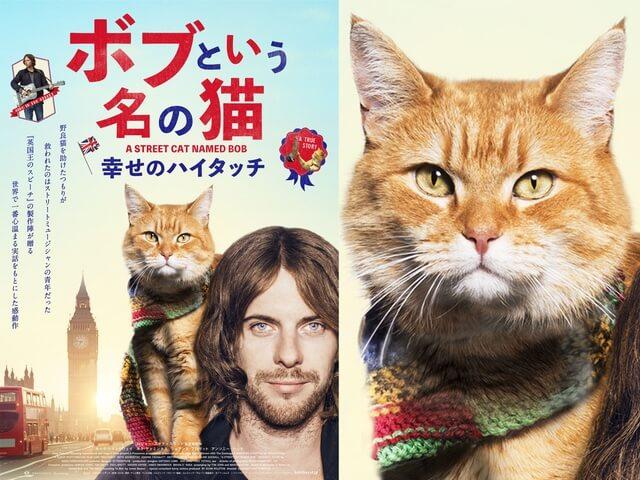 ホームレスと野良猫の友情物語(実話)が映画化「ボブという名の猫 幸せのハイタッチ」