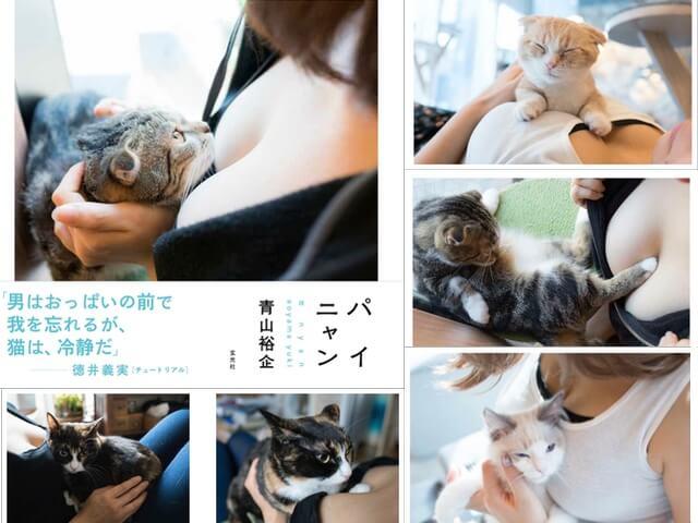 チュート徳井さんも堪能、猫とおっぱいの写真集「パイニャン」