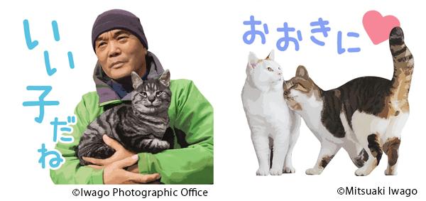 岩合光昭のLINEネコスタンプ「ねこの京都」は、岩合さん自身のスタンプ入り