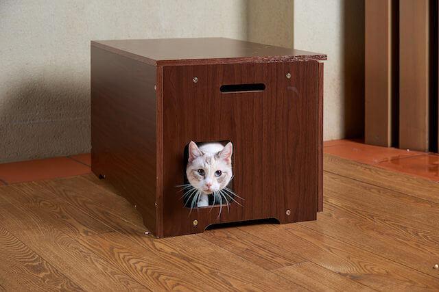 猫トイレカバー「Caterior(キャッテリア)から出ようとする猫