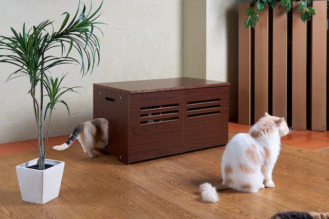 猫トイレカバー「Caterior(キャッテリア)に猫が入る様子