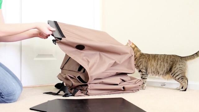 プラスチック製の板を差し込んで床を作る猫ハウス「Hangin Cat Condo」