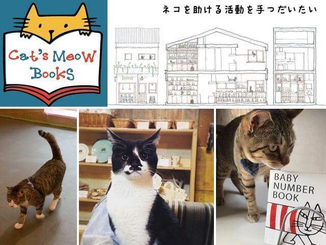 保護猫と書店が助け合う三軒茶屋の猫本屋、Cat's Meow Books((キャッツ ミャウ ブックス))