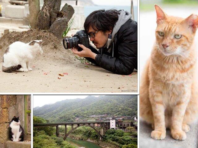 スマホでもOK!猫写真家・沖昌之さんと行く台湾ネコ撮影ツアー