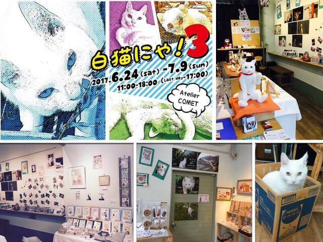白猫テーマの作品を集めた展示会「白猫にゃ! 3」が開催中