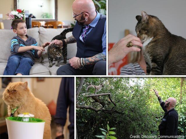 飼い主の悩みを解決する痛快ドキュメンタリー、「猫ヘルパー シーズン8」がアニマルプラネットで放送